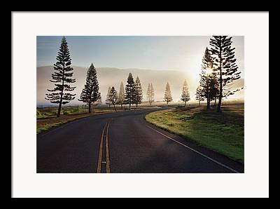 Foggy Road Framed Prints