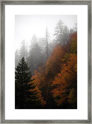 Early Morning Fog Smoky Mountains Framed Print by John Saunders