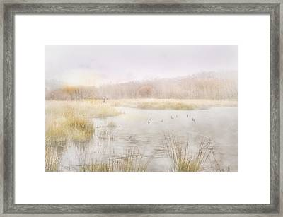 Early Morning Geese Framed Print