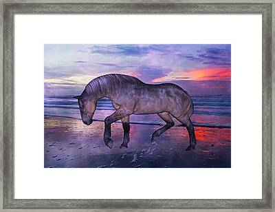 Early Morning Hours Framed Print