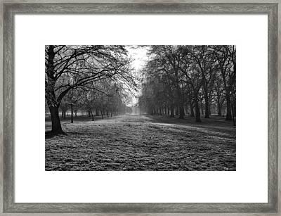 Early Morning In Hyde Park Framed Print