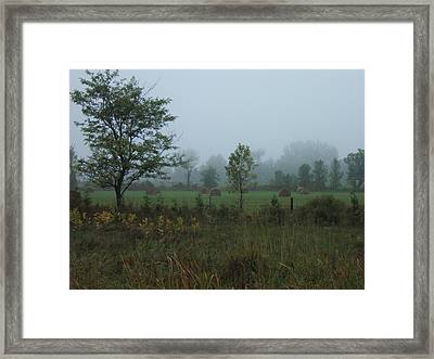 Early Morning In The Country Framed Print by Margaret McDermott