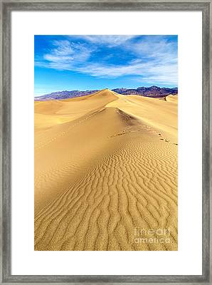 Early Morning In The Mesquite Sand Dunes Adjacent To Stovepipe Wells In Death Valley National Park Framed Print by Jamie Pham