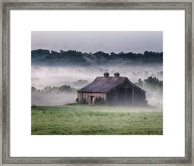 Early Morning In The Mist Standard Framed Print