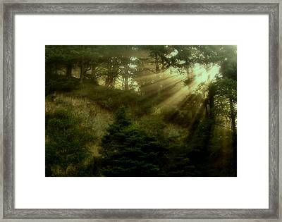 Early Morning Framed Print by Katie Wing Vigil