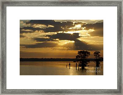 Early Morning Light At Lake Deutrive Framed Print by Kelly Morvant