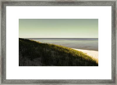 Early Morning Light Framed Print by Michelle Calkins