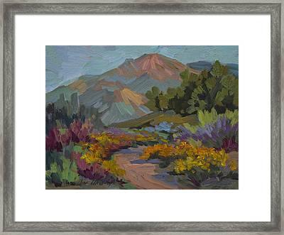 Early Morning Light Santa Barbara Framed Print by Diane McClary
