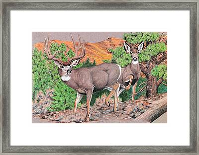 Early Morning Retreat Framed Print