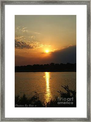 Framed Print featuring the pyrography Early Morning Rise by Roseann Errigo