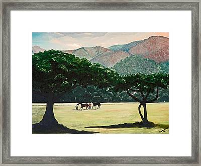 Early Morning Savannah Framed Print by Karin  Dawn Kelshall- Best