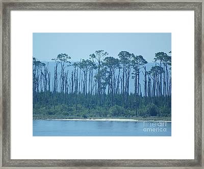 Early Morning Serenity Framed Print by Joseph Baril