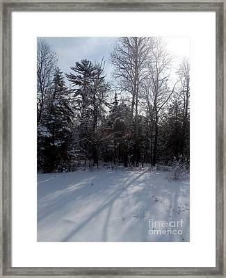 Early Morning Shadows Framed Print by Steven Valkenberg