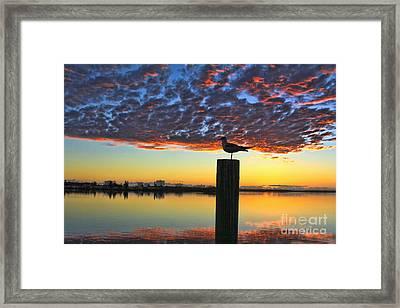 Early Morning View Framed Print by Deborah Benoit