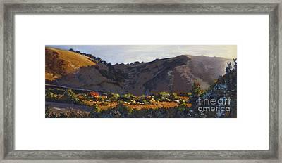 Early Riser Framed Print by Betsee  Talavera