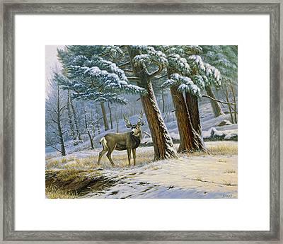 Early Snow- Mule Deer Framed Print by Paul Krapf