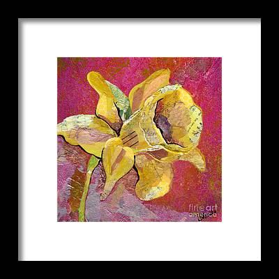 Orchid Framed Prints