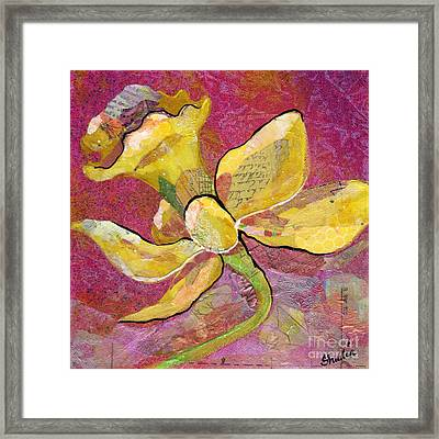 Early Spring Iv Daffodil Series Framed Print by Shadia Derbyshire