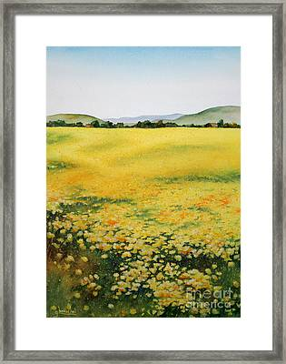 Early Spring Near Half Moon Bay Framed Print