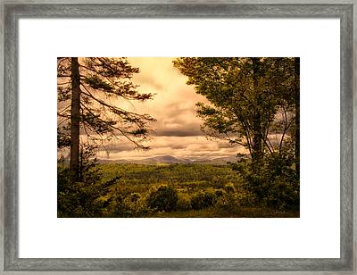 Early Spring Rain Framed Print by Bob Orsillo