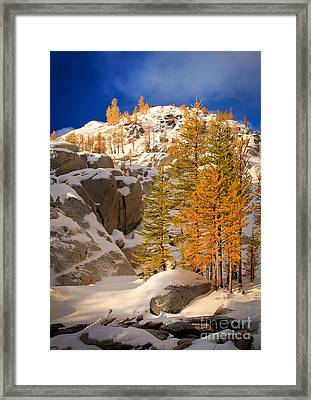 Early Winter Framed Print by Inge Johnsson