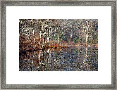 Early Winter Reflects Framed Print by Karol Livote