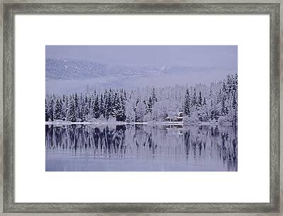 Early Winter Snow Greys The Trees Framed Print by Leanna Rathkelly