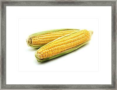 Ears Of Maize Framed Print