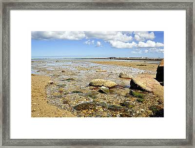 Earth And Sea Framed Print