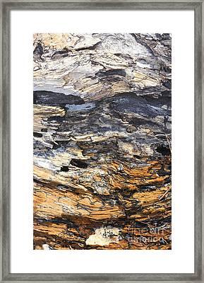 Earth And Sky Framed Print by Marcia Lee Jones