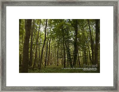 Earth Day Special - In Wildness Framed Print