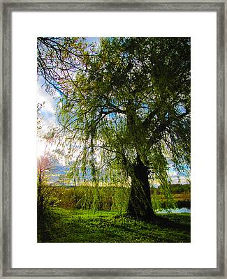 Earth Green Not Avatar Blue Framed Print