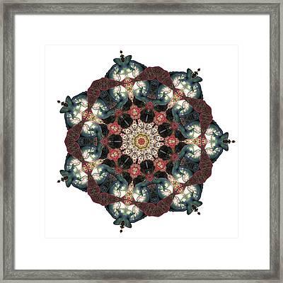 Earth Nest Framed Print by Lisa Lipsett