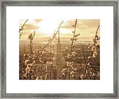 Earth Renewed Framed Print