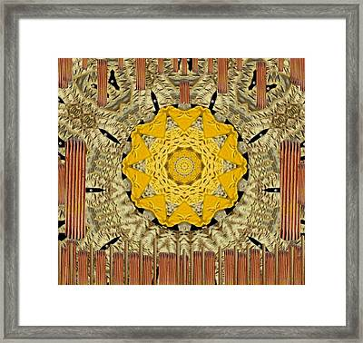 earth sun Popart Framed Print