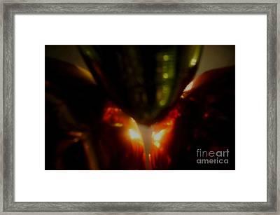 Earth Womb Framed Print by Baljit Chadha