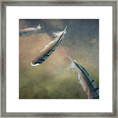 Earthbound Framed Print by Brenda Erickson
