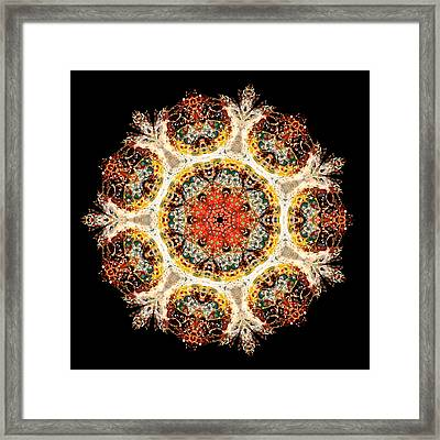 Earthmind II Framed Print by Lisa Lipsett