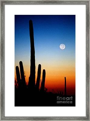 Earthshine Framed Print by Douglas Taylor