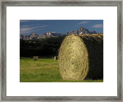 East Dallas Divide Mt Sneffels Framed Print