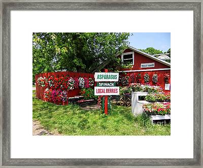 East End Farmstand Framed Print by Ed Weidman