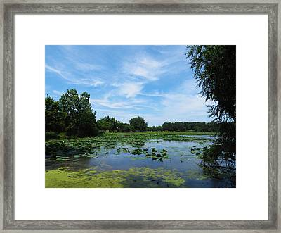 East Harbor State Park - Scenic Overlook Framed Print