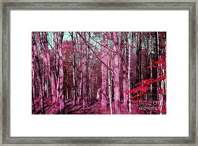 East Trail  Framed Print by Tina M Wenger