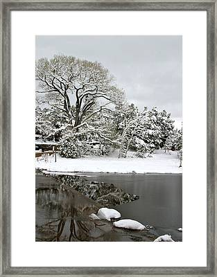 East Verde Winter Crossing Framed Print