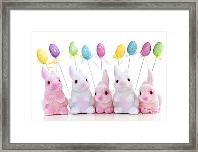 Easter Bunny Toys Framed Print by Elena Elisseeva