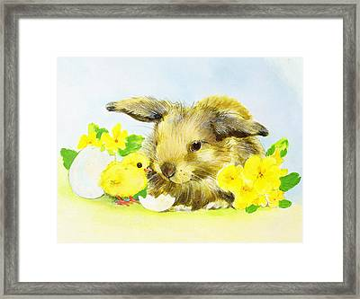 Easter Bunny With Primrose And Chick Framed Print by Diane Matthes