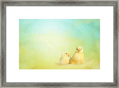 Easter Chicks Framed Print by Heike Hultsch