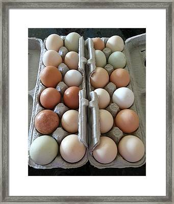 Easter Eggs Au Naturel Framed Print