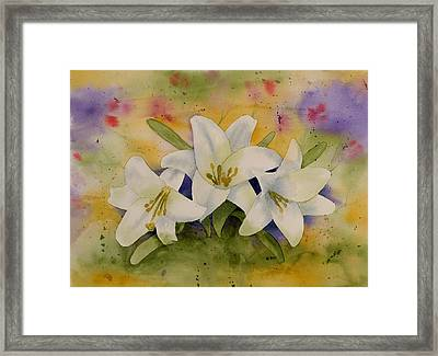 Easter Lilies Framed Print