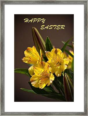 Easter Lilies Framed Print by Sandi OReilly
